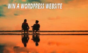 win a wordpress website